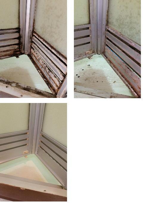 お 風呂 の ドア 掃除